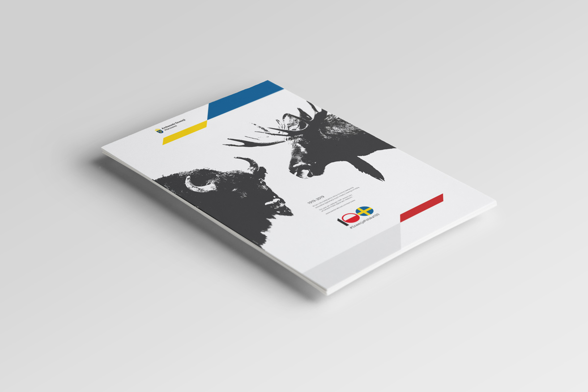 Graphic design example: logo, illustration, promo card
